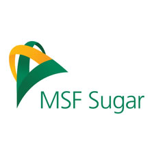 MSF Sugar
